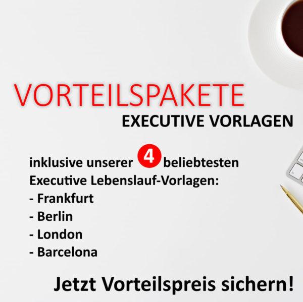 Bundle Lebenslauf Executive